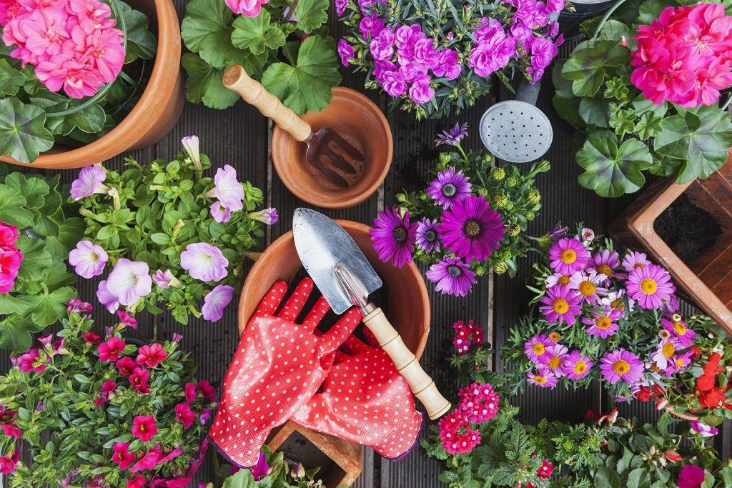 best gardening tools 2 uj