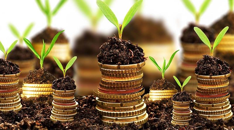 mezőgazdaság-támogatás pénz