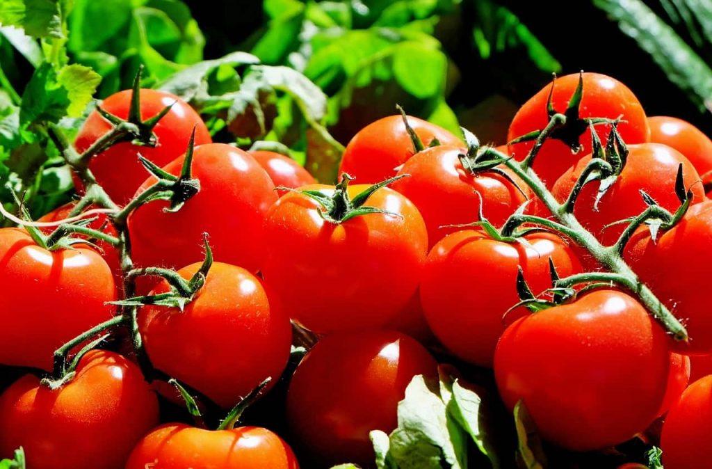 tomatoes min