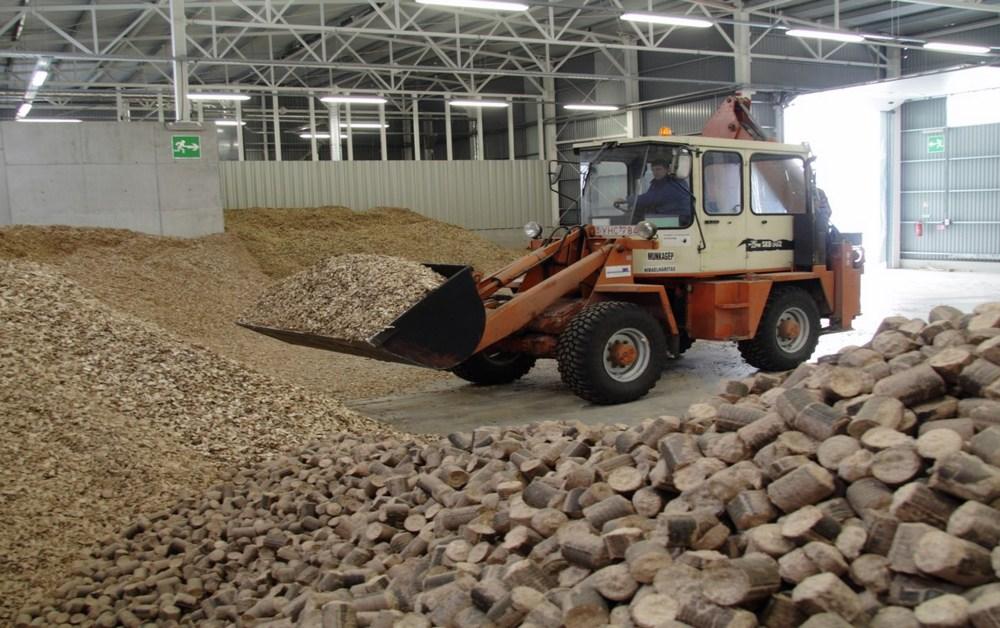 biomassza bioenergia