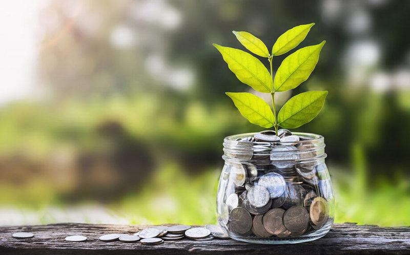 zöld-kötvény-zöld-gazdaság-zöldkötvény